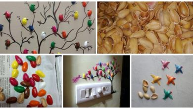 Photo of How To Make Pista Shell Bird For Wall Decoration