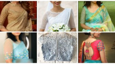 Photo of Net blouse design