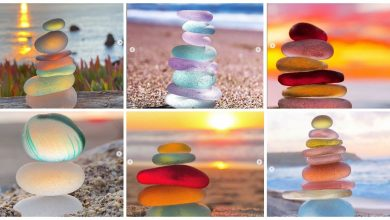 Photo of How Many of You Just Love Sea glass